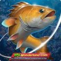 Fishing Hook 2.1.1 Apk + Mod Free Download for Android