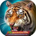 The Tiger 1.5.2 Apk + Mod Free Download for Android